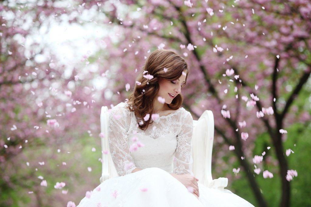 Photo cherry blossom petals falling on bride